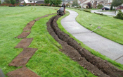 Lawn Drainage and New Sod