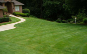 Property Maintenance and Lawn Care